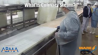 Cooking and Cleaning with Culinary Steam