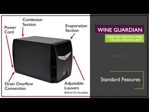 Video thumbnail for Wine Guardian Through The Wall Systems