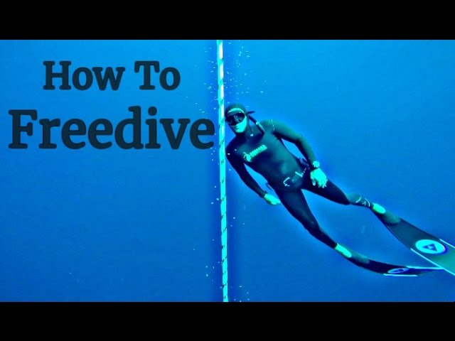 How to Freedive (with Carlos Coste, 11 time world record freediver) - Sailing La Vagabonde
