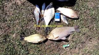 Рыбалка в озерном смоленская область