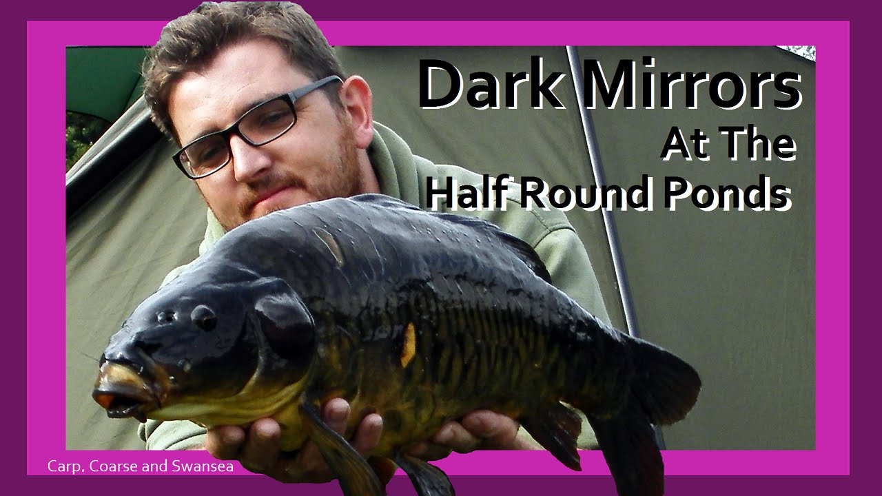 Dark Mirrors at the Half Round Ponds. Carp, Coarse and Swansea. Video 139