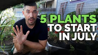 5 Plants You Can Still Grow In Late July