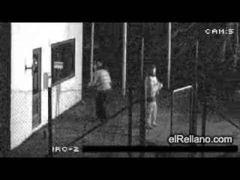 17 giây xem 2 thằng trộm ngu nhất thế giới