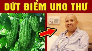 MỚi PhÁt HiỆn Ra Loại Rau Chống Ung Thư MỌc ĐẦy Ở Việt Nam Mà RẤt Ít Người Biết