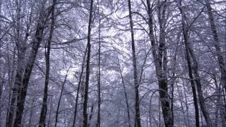 Here we come a wassailing - Celtic carol (Carlyle Fraser)
