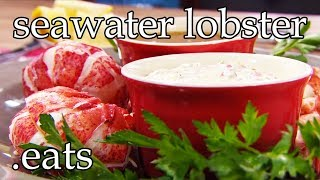 Profession Chefs Best Lobster Recipe!