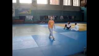 Акробатика на дзюдо