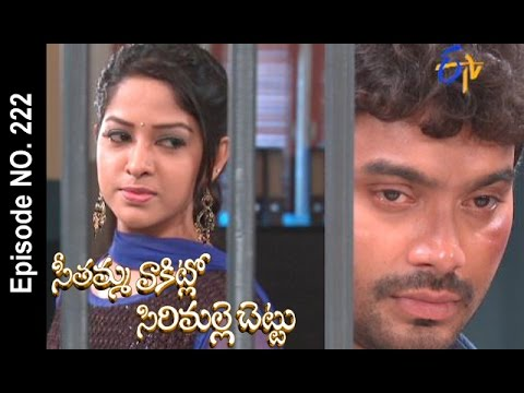 Seethamma-Vakitlo-Sirimalle-Chettu--21st-May-2016-–-Full-Episode-No-222