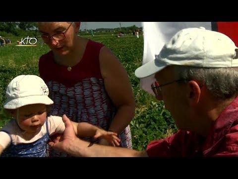 Les grands-parents : quelle place auprès des petits-enfants ? (2/2)