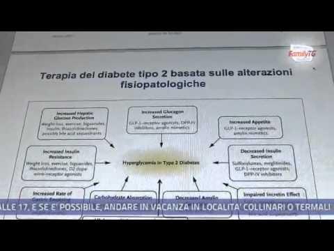 Meccanismo di secrezione insulinica nelluomo