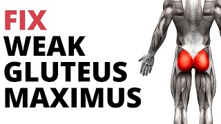 5 Strengthening Exercises For Weak Gluteus Maximus (NO SQUATS!)