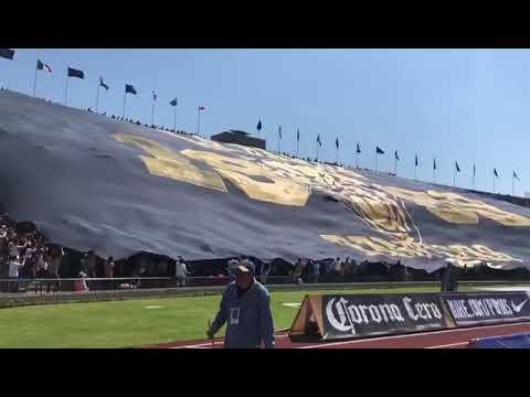 """""""La Rebel Orgullo Azul y Oro"""" Barra: La Rebel • Club: Pumas"""