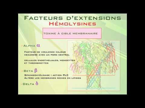 Le forum chez qui chez lenfant atopitchesky la dermatite