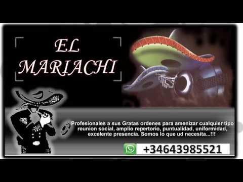 Mariachi Madrid Internacional