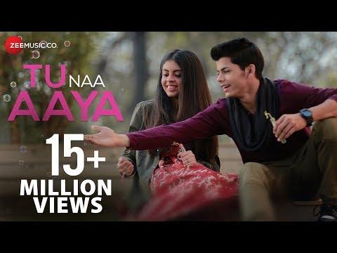 Tu Naa Aaya hindi video Song