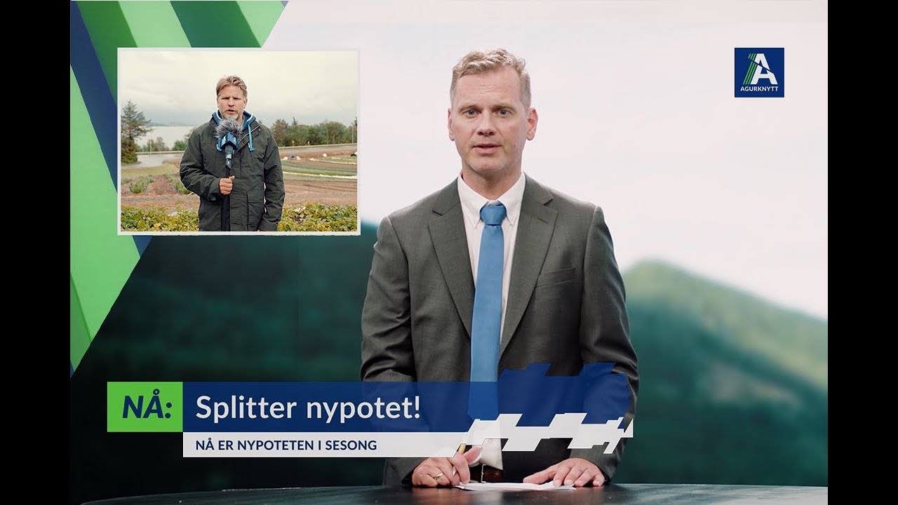 Splitter nypotet