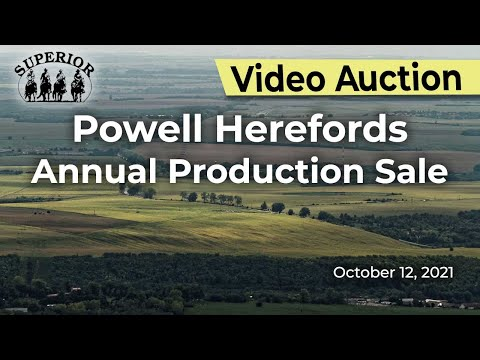 Powell Herefords Annual Production Sale
