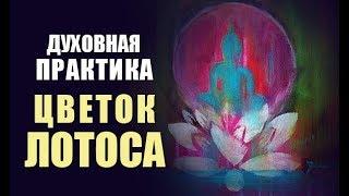МЕДИТАЦИЯ «ЦВЕТОК ЛОТОСА» - Духовная Практика Будды