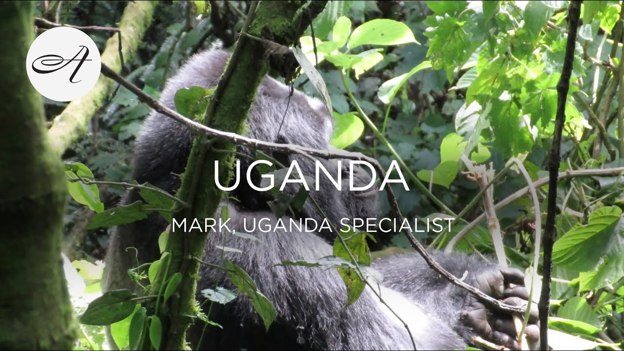 My travels in Uganda, 2018