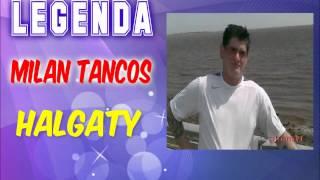 Milan Tancos HALGATY - 10