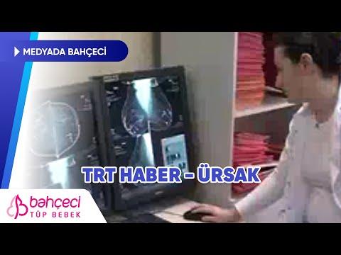 TRT Haber – Kanser Tedavisi Öncesi Embriyosu Dondurulan Karapınar, İkizlerini Büyütüyor!