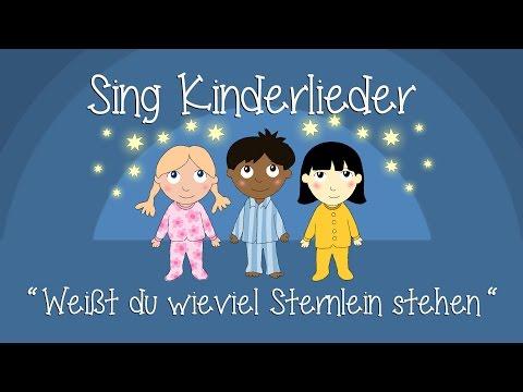 Das Kinderliederfestival die Sommersprosse
