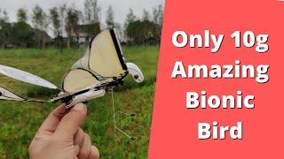 MetaFly Bionic bird Biometric Drone A new flying experience
