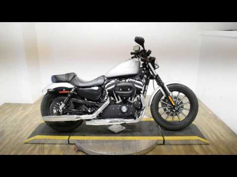 2010 Harley-Davidson Sportster® Iron 883™ in Wauconda, Illinois - Video 1