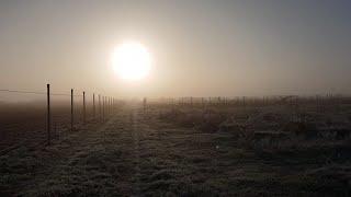 Огромное солнце в ст Калининская.  Холодно и красиво.