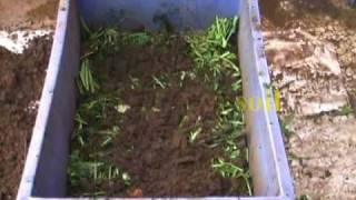 Vermiculture pit
