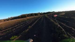 FPV - Flight test- Nazgul5 6S #2
