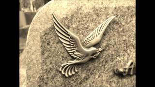Marissa Nadler - Hay tantos muertos