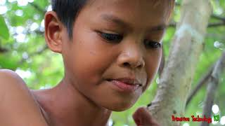 Primitive Technology - Eating delicious - Cooking eel egg on a rock