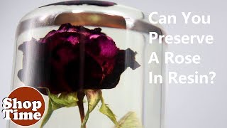 Can You Preserve A Rose In Resin?! | Dipit #24