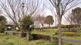 大島小松川公園のイメージ