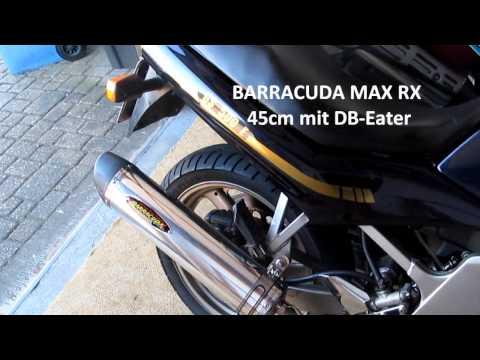 Suzuki GS 500 E mit Barracuda MAX RX Auspuff