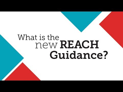 What Is the New REACH Guidance? - YouTube
