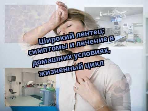 Широкий лентец: симптомы и лечение в домашних условиях, жизненный цикл