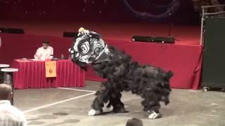 2018開年全球最好看的舞狮表演  獅王爭霸之中國香港隊