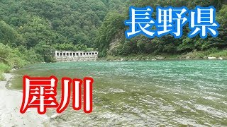 長野県、犀川で大型ニジマスを狙う!