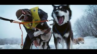 Камчатская традиционная гонка на собачьих упряжках