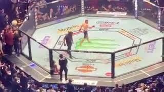 DEPOIS DE KHABIB FINALIZAR CONOR, CONFUSÃO BIZARRA NO UFC 229.