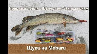 Ловля рыбы на мебару