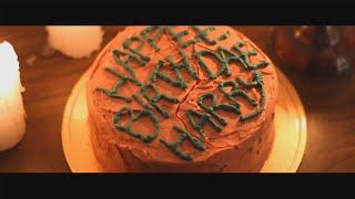 해그리드 시점에서 해리포터 케이크 만들기  Harry Potter Birthday Cake