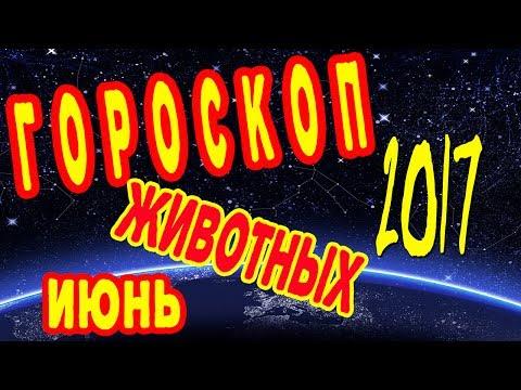 Ведический гороскоп на неделю с 7 по 13 августа 2016 видео