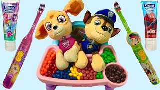 Paw Patrol Skye Chases Puppies Brush Their Teeth
