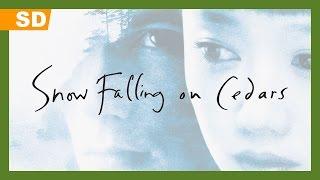Snow Falling on Cedars (1999) Video