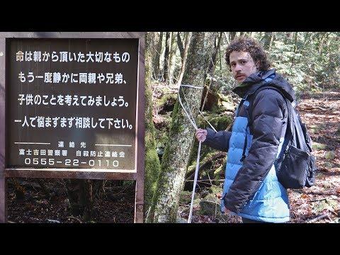 """Visité el """"bosque de los suicidas"""" en Japón..."""