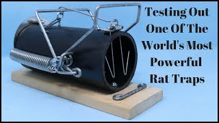 Testing Out One Of The World's Most Powerful Rat Traps - Ouell 3-10 - Mousetrap Monday