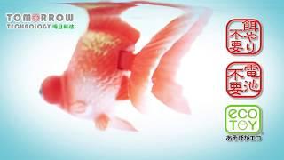 日本不必換水餵食的太陽能金魚TakaraTomyA.R.T.S|TomorrowTechnology明日科技
